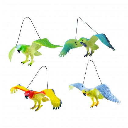 the parrots, 4 types