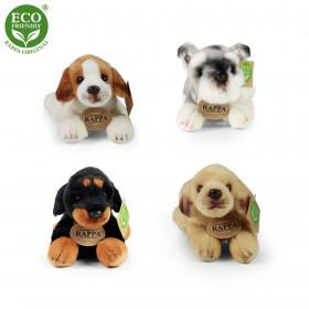 the cuddly lying dog, 4 kinds, 16 cm