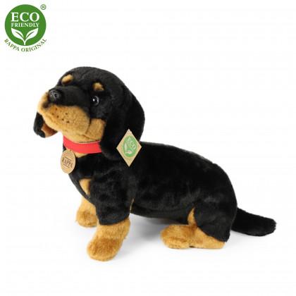 Plush dachshund 30 cm