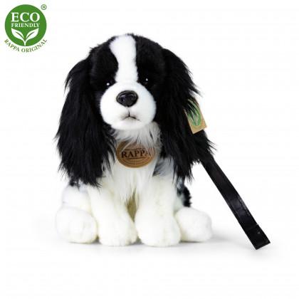 Plush dog cavalier with a leash 27cm ECO